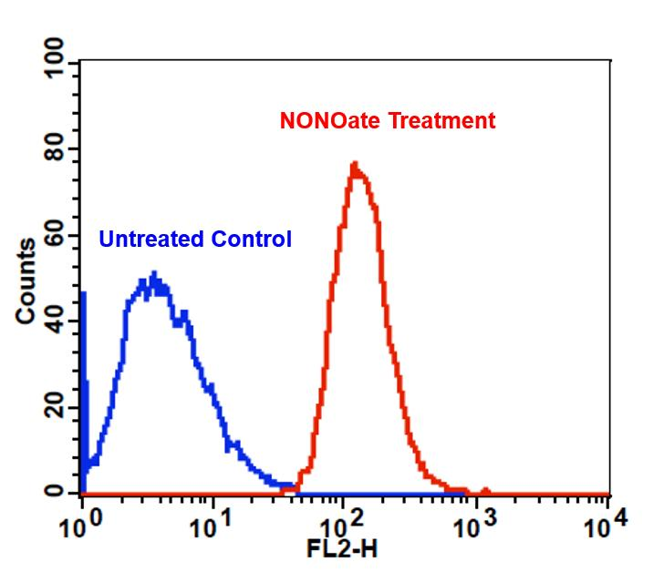 Detection of exogenous nitric oxide (NO) in Jurkat cells upon DEA NONOate treatment (NO donor) using Cell Meter™ Fluorimetric Intracellular Nitric Oxide Assay Kit (Cat#16351). Cells were incubated with Nitrixyte™ Orange at 37 °C for 30 minutes. Cells were further treated with (Red line) or without (Blue line) 1 mM DEA NONOate in Assay Buffer (Component C) at 37 °C for an additional 30 minutes. The fluorescence signal was monitored at FL2 channel using a flow cytometer (BD FACSCalibur).