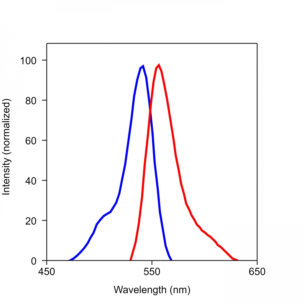 <p>The excitation and emission spectra of iFluor<sup>TM&nbsp;</sup>546.&nbsp;</p>