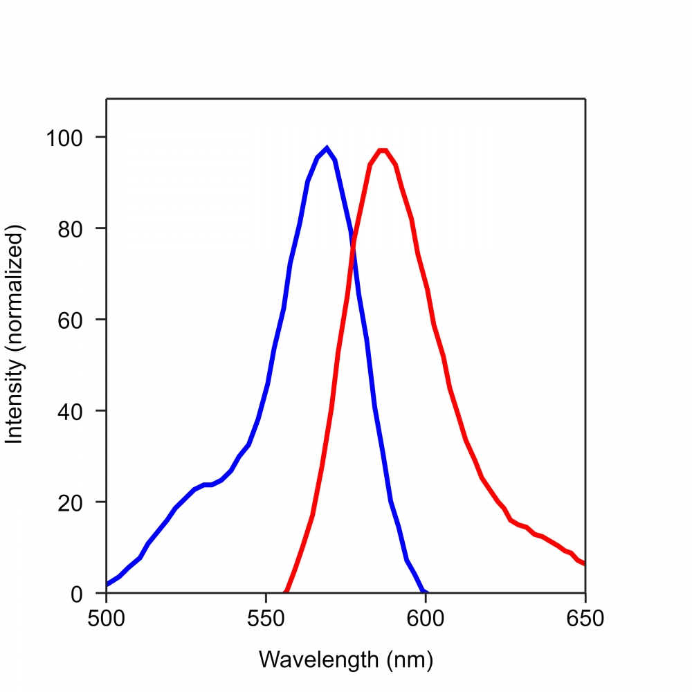 <p>The excitation and emission spectra of iFluor<sup>TM</sup> 568. </p>