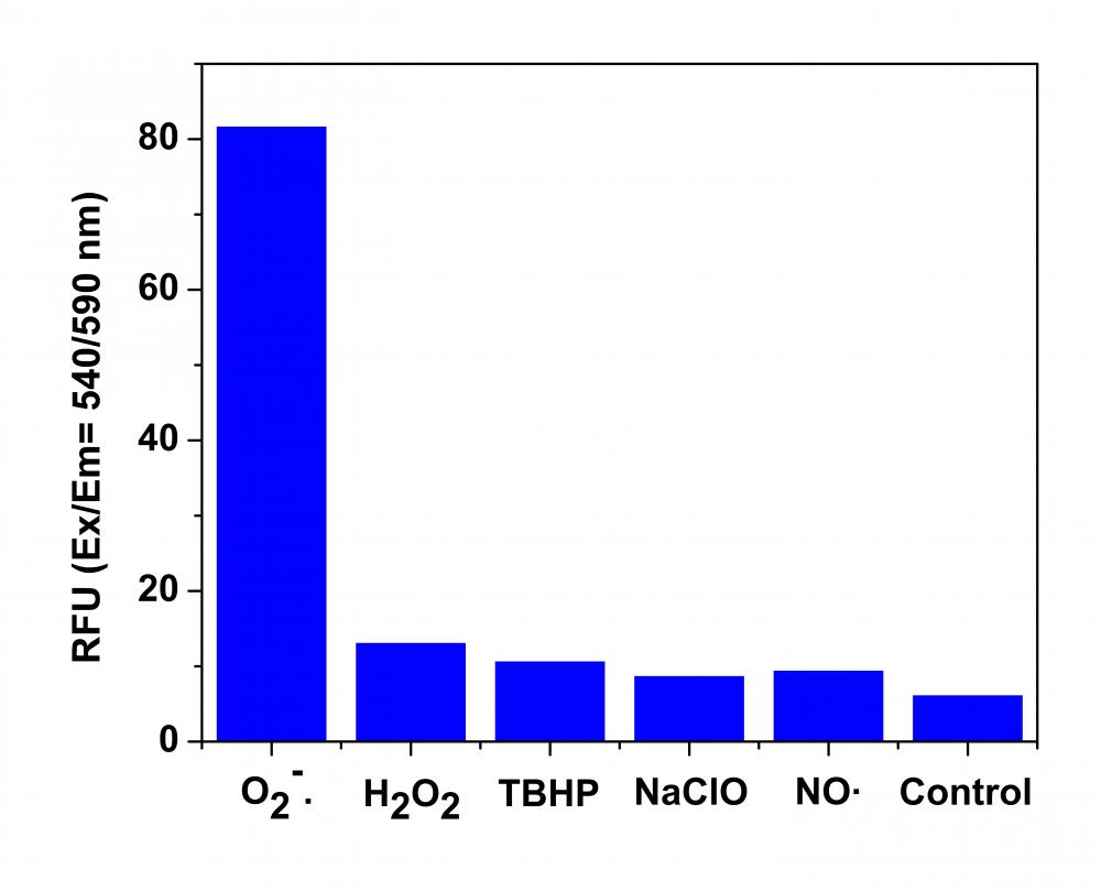 Fluorescence response of MitoROS™ 580 (10 µM)to different reactive oxygen species (ROS) and reactive nitrogen species (RNS). The fluorescence intensities were monitored at Ex/Em = 540/590 nm.